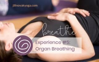 Organ Breathing